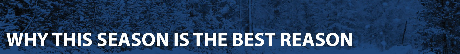 Winter Tires. Why This Season is the Best Reason! Winter Tire Promotions